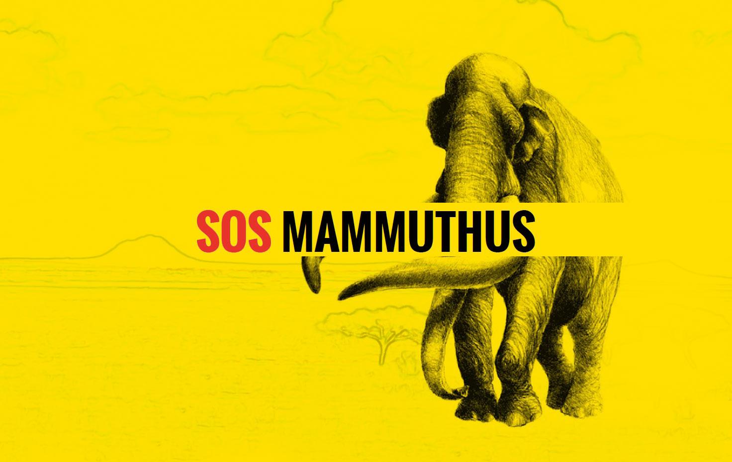 sos mammuthus