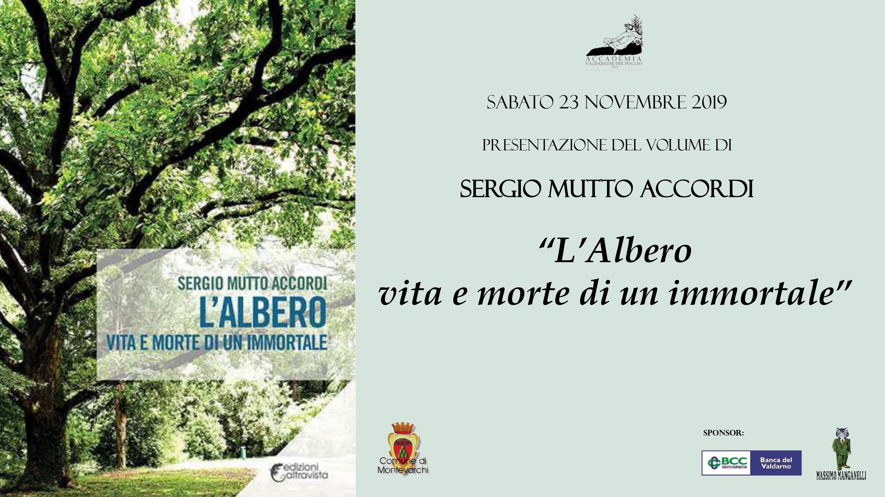 Sergio Mutto Accordi